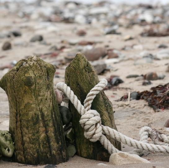 Canva - Beach, Sand, Rope, Poles, Coast, Relax, Beach Sand